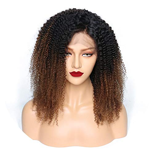 Lace Front Human Hair Wigs For Black Women Ombre T1B/4 Pre Plucked Brazilian Remy Hair Wigs With Baby Hair Hair,14inches