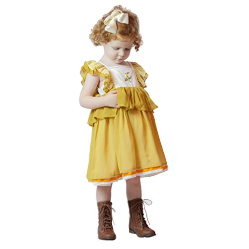 (JannyBB Little Baby Girls Smocked Embroidered Lace Embellished Ruffle Sleeve Party Chiffon Dress, Yellow 18M )