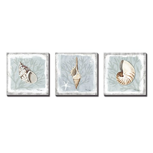 3Hdeko-3 Panels Seashell Mordern Abstract Painting Conch Coastal Artwork Prints Pictures Framed Paintings on Canvas Wall Art for Living Room Bedroom Home Decor,12x12Inch (Sea Shell Art)