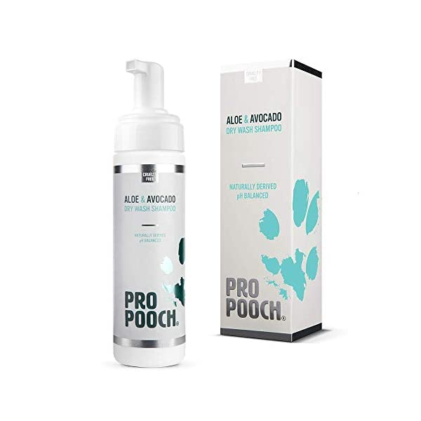 Pro Pooch Dry Shampoo For Dogs (200 ml) Quick Drying Waterless No Rinse Mousse. 1