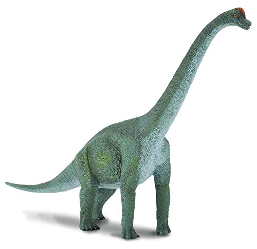 CollectA Prehistoric Life Brachiosaurus Toy Dinosaur Figure - Paleontologist Approved Hand Painted Model -