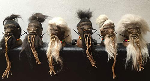 Daprofe Shrunken Head Replica for Sale with Base Bearded Includes one(1) Head Similar to Those Shown in Photo]()