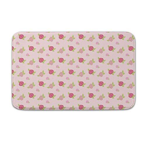 DKISEE Indoor Outdoor Entrance Rug Floor Mat Bathmat Pink Ballerinas Doormat