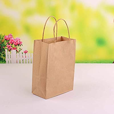 Earthware eco Friendly Bags Kraft Paper Bag with Handles 10pcs EC203