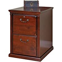 Bowery Hill 2 Drawer File Cabinet in Vibrant Cherry