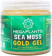 MegaPlants Sea Moss Gold Gel | 16 Oz | All Natural | Organic | Wildcrafted | Non GMO No Preservatives | Marine