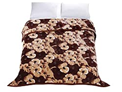 Premium Thick Blanket with Double Layer Reversible Plush Raschel Blanket Printed or Solid Color - Supersoft, Warm, Silky, Hypoallergenic, Fade resistant in Queen Size