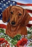 "Dachshund Red Dog – Tamara Burnett Patriotic I Garden Dog Breed Flag 12"" x 17"" Review"
