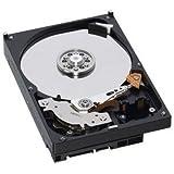 Western Digital 500 GB AV 100 Mb/s 7200 RPM 8 MB Cache Bulk/OEM AV Hard Drive- WD5000AVJB