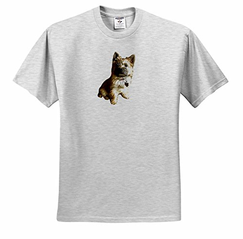 Toto Terrier Cairn - 3dRose Scenes from The Past Ephemera - The Cutest Cairn Terrier in The World Cuter Than Toto Wizard of oz - T-Shirts - Adult Birch-Gray-T-Shirt 2XL (ts_244031_22)