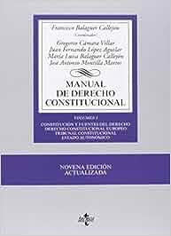 Manual de Derecho Constitucional: Vol. I: Constitución y
