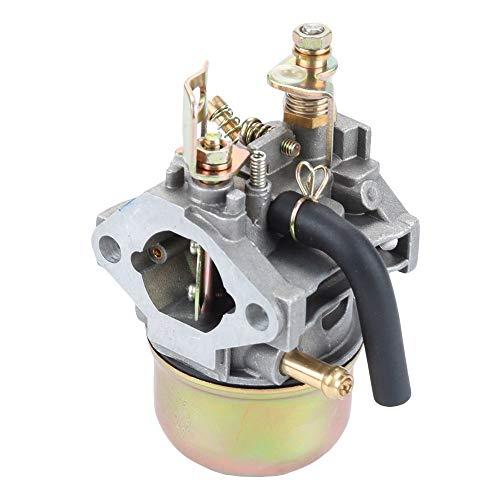 Hippotech Carburateur avec Filtre /à Carburant pour Subaru//Robin EH12 EH122 G/én/érateur de Moteur Remplace 252-62454-10 252-62454-20 252-62404-00 252-62454-30