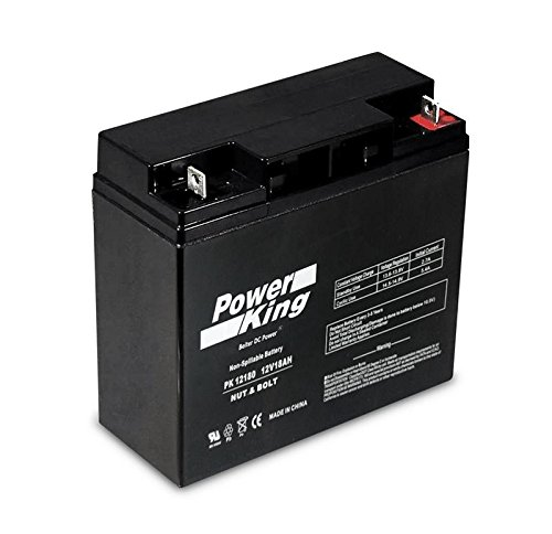 Briggs & Stratton 193043GS Battery Replaces 193463, B4489GS, 193043GS, 12V18AH-X, CP12180D, CP12180X, 750400001, FM12180 Replacement Battery 12v 18ah S CP12180 Sealed AGM for Generac, Briggs & Stratton, CPE Auto, Ridgid Generators 17 ah, 17.2 ah, 17.5 ah, 18 ah By Beiter DC Power