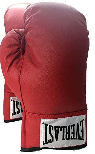 Everlast Leather Boxing Gloves - 1 Pair 18 Ounce