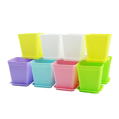 Vejaoo 12pcs Modern Simple Plastic Mini Square Plant Flower Pots, Decorative Office & Home,6 Colors (12 pack 6 colors)