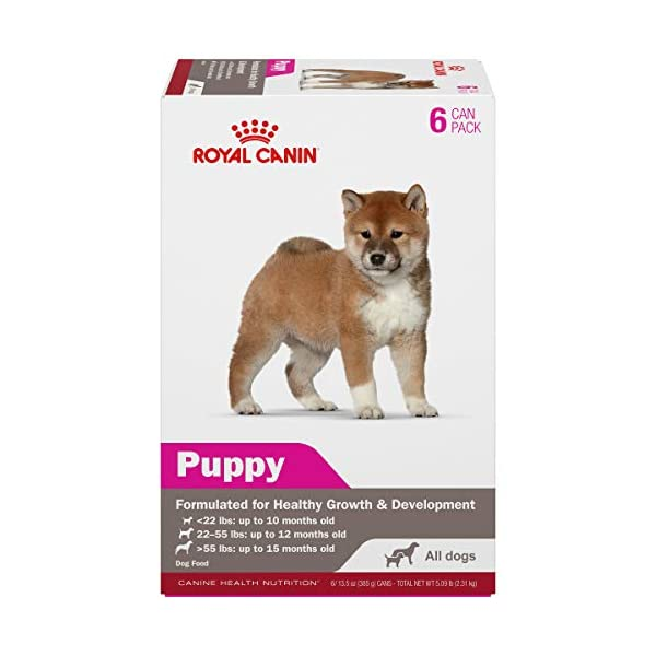 Royal Canin Canine Health Nutrition Puppy Canned Dog Food, 13.5 oz, 6-Pack