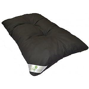 coussins pour chiens guide d achat classement tests et. Black Bedroom Furniture Sets. Home Design Ideas