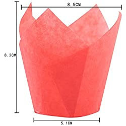 SK Tulip Cupcake Liner Baking Cup - Red for Standard Size Cupcakes and Muffins Liners for Wedding Appx. 200 pc (Red)
