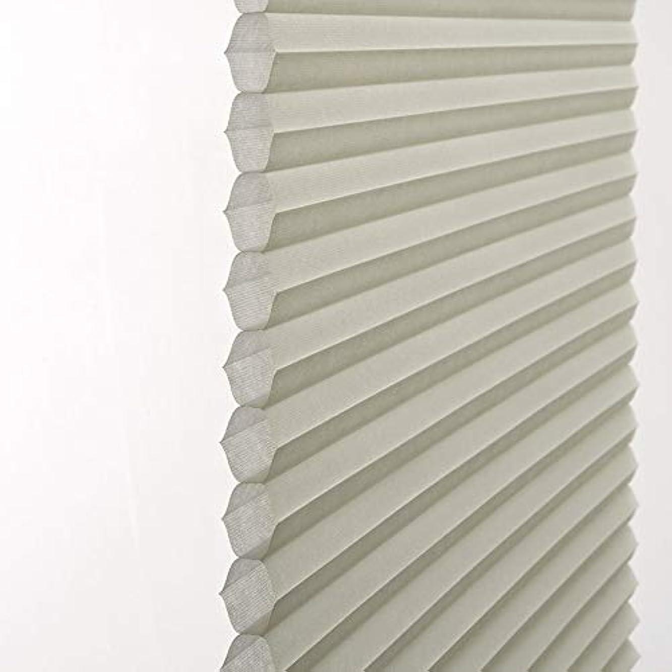 み階下シャベルeeHaus ロールスクリーン 遮光1級 遮熱 断熱 防炎 ロール カーテン 遮光率99.9% ブラインド オーダーメイド