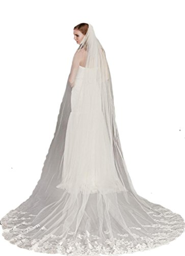 Passat Diamond White Single-Tier 3M Cathedral Metallic Lace Wedding Veil with Pencil Edge DB126 by Passat