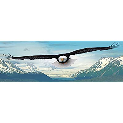 EuroGraphics Eagle 1000-Piece Puzzle: Toys & Games