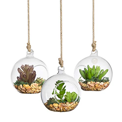 SunGrow Hanging Glass Terrariums, 3.11×3.45 Inches, Spherical Air Plant Orb, Handmade, Heat-Resistant Glass, Accessories Not Included, 3 Pack