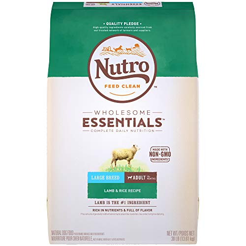 NUTRO WHOLESOME ESSENTIALS Adult Large Breed Natural Dry Dog Food - Lamb (Best Affordable Dog Food Brand)
