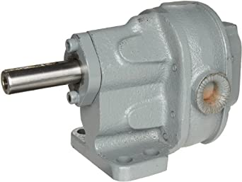 BSM Pump 713-10-3 1S Rotary Gear Pump Foot Mounting Without Relief Valve