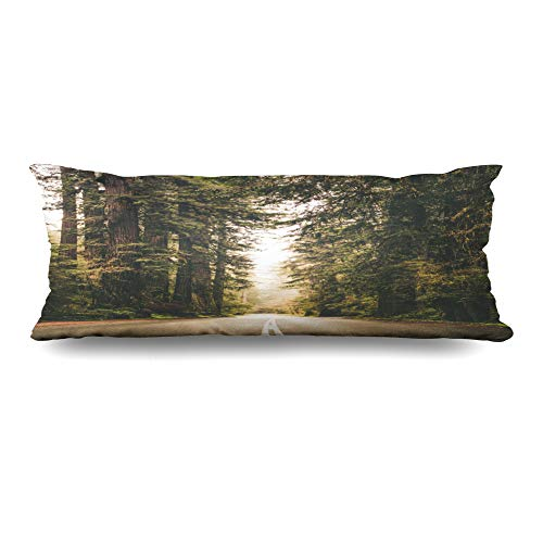 Ahawoso Body Pillows Cover 20x54 Inches Destination California Foggy Forest Road Trip Nature Ecosystem Parks Redwood Adventure America Avenue Decorative Zippered Pillow Case Home Decor Pillowcase - Park Avenue Pillow
