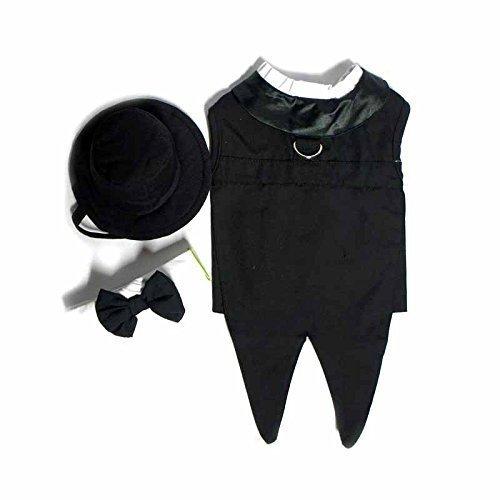 Doggie Design Tuxedo para Perro con Colas Formales, Color Negro, Grande (Pecho 48-53 cm)