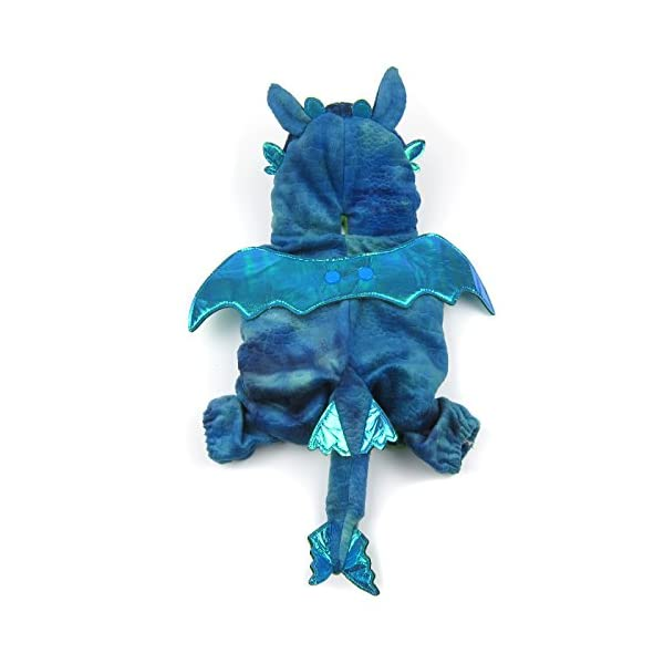 Night Fury Dragon Costume Alfie Pet