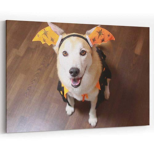 The Dog is Wearing a Halloween Costume Canvas