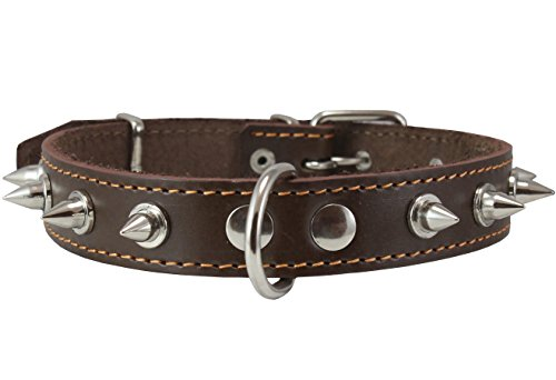 Dogs My Love Real Leather Brown Spiked Dog Collar...