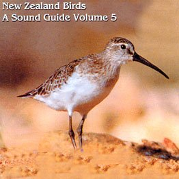 New Zealand Birds - A sound Guide, Vol. 5: Chatham Island Snipe to Kea (New Zealand Birds, vol. ()