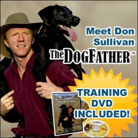 Don Sullivan Dog Training Barking