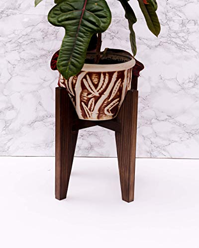 4bc225e2dfa2 Amazon.com: Tall Wooden Plant Stand Indoor Modern - Adjustable for pots  from 4 to 5,9 Inches - Mid Century Pedestal Wood Plant Stool - Corner Floor  Flower ...