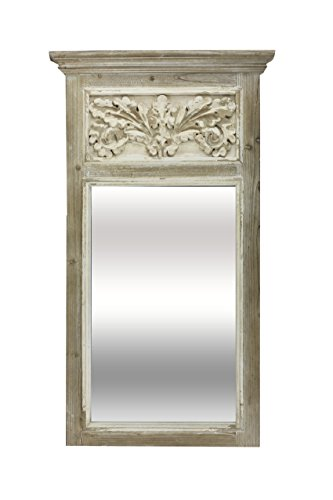 Vagabond Vintage Carved Trumeau Mirror in Distressed