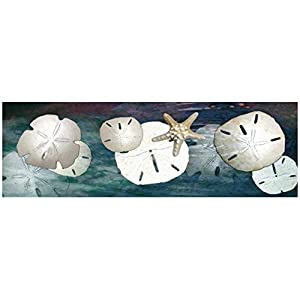 41qEQdn2aQL._SS300_ Best Sand Dollar Wall Art and Sand Dollar Wall Decor For 2020