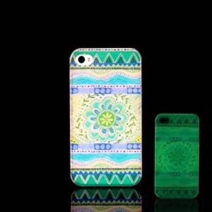 QJM iPhone 4/4S compatible Graphic/Special Design/Glow in the Dark Back Cover