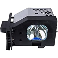 ROCCER Lamps TY-LA1000 Replacement Lamp in Housing for Panasonic Televisions