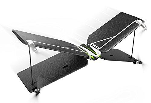 Parrot Swing + Flypad