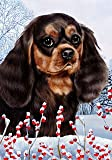 "Cavalier King Charles Spaniel Black/Tan by Tamara Burnett Winter Berries Garden Dog Breed Flag 28"" x 40"" Review"