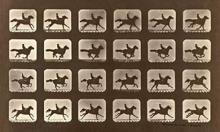 Muybridge Horse Eadweard Galloping (Motion Study: Man Riding A Galloping Horse by Eadweard Muybridge - 15