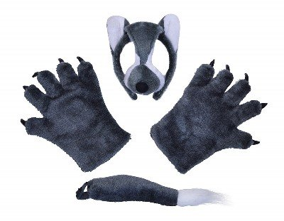Bristol Novelty DS139 Wolf Costume Accessory Kit, One Size