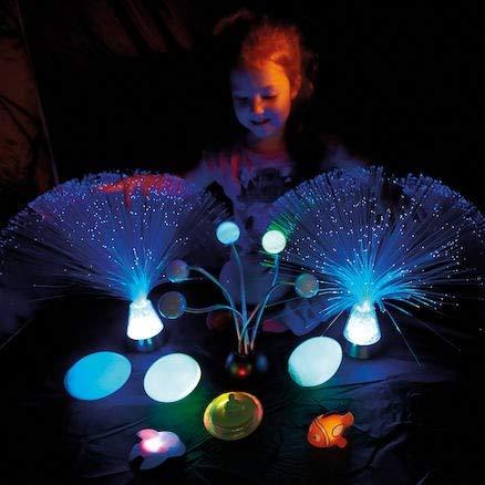 Sensory Light up Toys Kit for Kids by Kids Dynamics (Image #2)