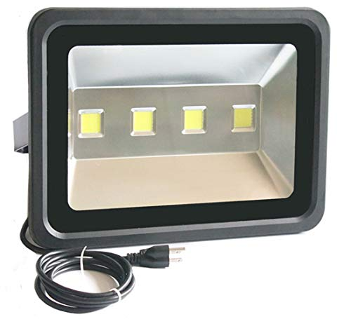 1000W Flood Light Bulb