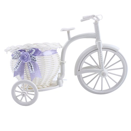 (ReFaXi Plastic Tricycle Bike Basket for Flower Vase Storage Decoration Gift Fashion)