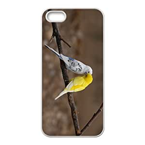 Canary'Date Hight Quality Plastic Case for Iphone 5s by icecream design