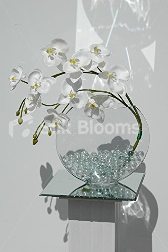 Artificial White Phalaenopsis Orchid & Glass Vase Floral Display Silk Blooms Ltd 6956