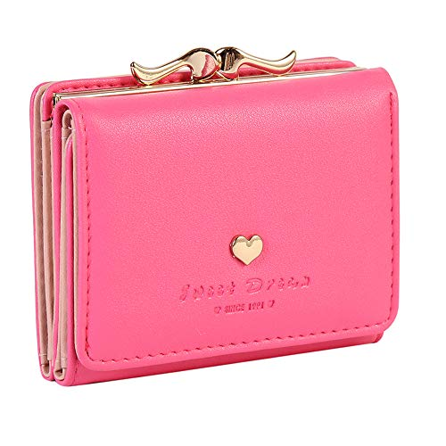 Damara Womens Metal Frame Kiss-lock Small Clutch Cards Holder Wallet,Rose ()